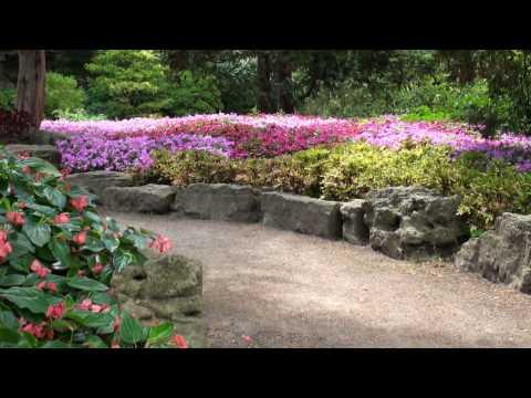 Best views of Rock Garden @ RBG (Royal Botanical Gardens in Burlington, ON)