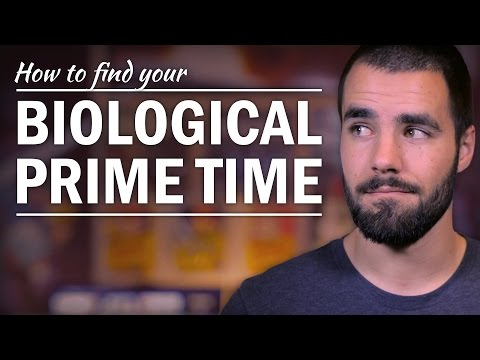 How to Find Your Most Productive Time of the Day - College Info Geek
