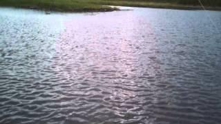 троллинг на кумском водохранилище