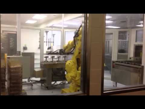 Robot cage cleaner