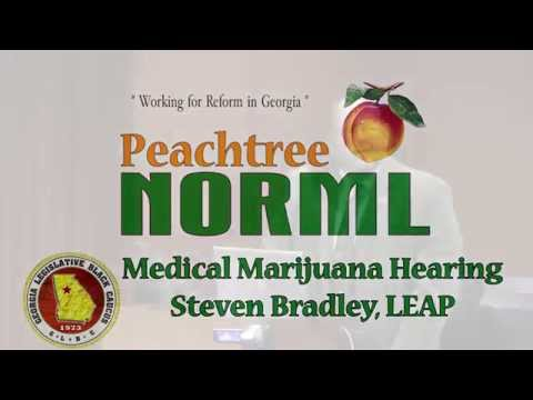 Stephen Bradley of LEAP offers testimony to the Minority Cannabis Commission Nov. 10, 2015