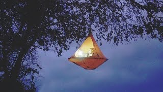 I Spent the Night in a Tree Tent and It Was Exactly What You