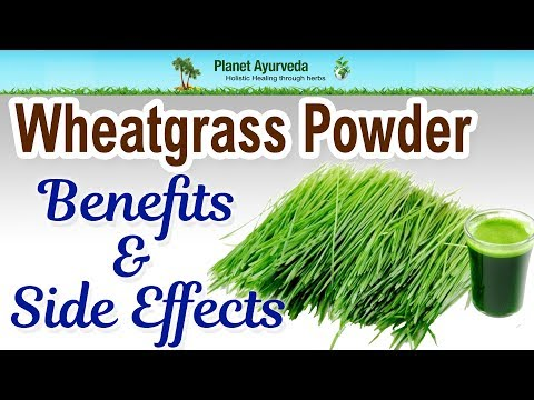 Wheatgrass Powder - Benefits & Side Effects