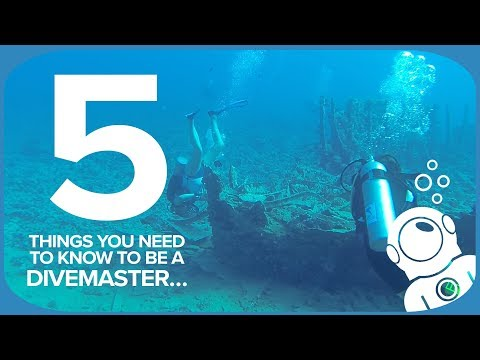 5 Things You Need To Know To Be A Divemaster…