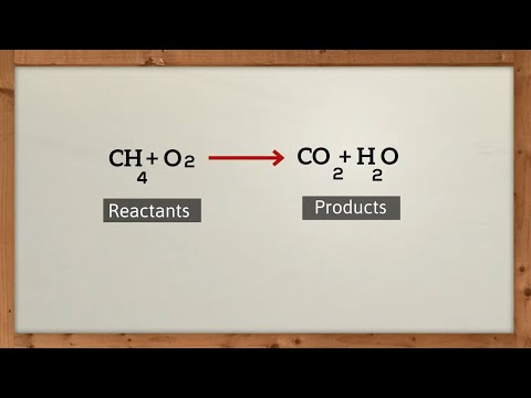 What does a chemical equation tell you?