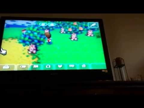 Animal Crossing City Folk how to catch a bee