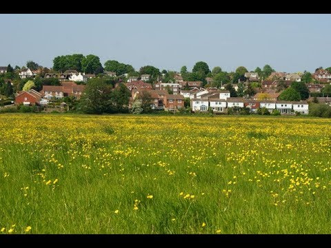 Places to see in ( Pulborough - UK )