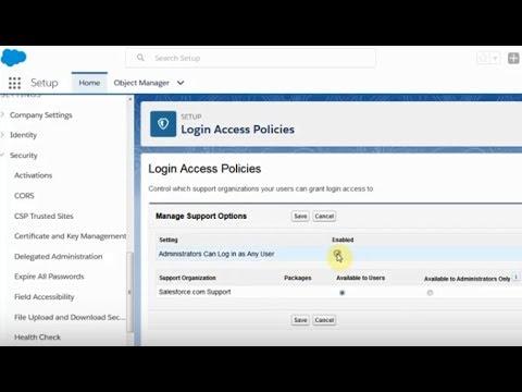 Salesforce: Admin Setup Login as User in Lightning