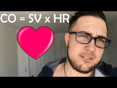 WTF is CO = SV x HR ?? (Cardiac Output)