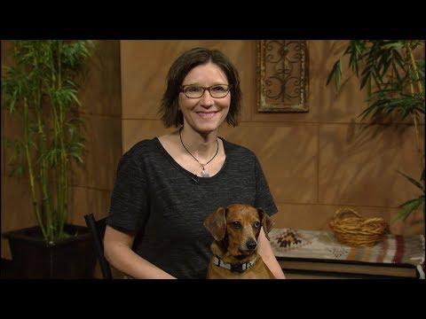 Why Orange Tree Won't Bloom |Daphne Richards |Central Texas Gardener