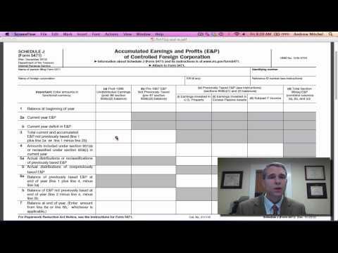 I.R.S. Form 5471, Schedule J