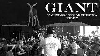 Giant - Kaleidoscope Orchestra Remix [Calvin Harris, Rag 'n' Bone Man]