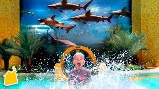 SLIDING THROUGH GIANT SHARK TANK! 🦈