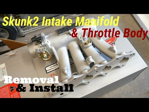 Skunk2 Intake Manifold & Throttle Body - How To Install - B20/B18 Civic EF