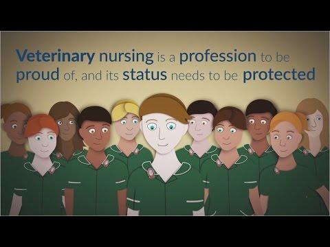 Veterinary nurses - true professionals