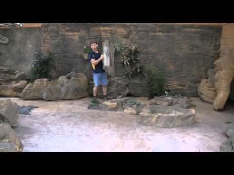 Customizing Faux Rock Wall Panels with Potrocks and Rock Planters