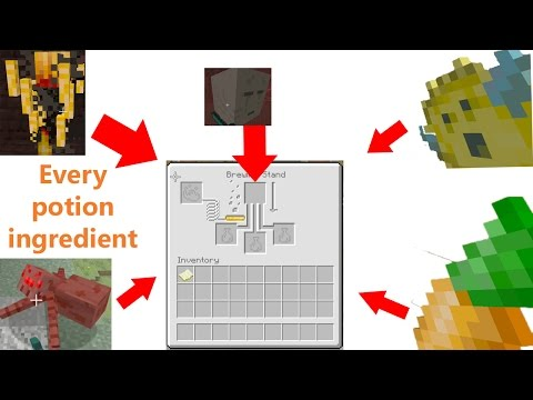 How to Get EVERY Ingredient For Potions In Minecraft and The New Potion stuff!