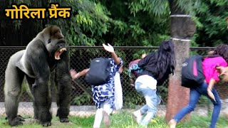 Gorilla Prank On People || Scarry Reaction By Public || Funny Prank || Comedy Pranks || Pune