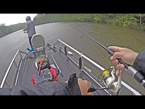 WILL POND BASS EAT IN POURING RAIN? Post Spawn Bass Fishing!