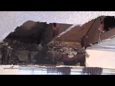 Ceiling collapse reveals black mold in woman's Keizer