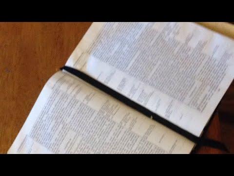 Live! Torah Observance