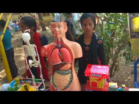 Science exhibition in our school