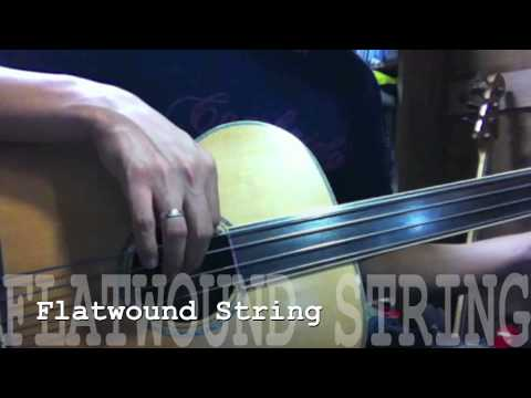 Cort Acoustic Bass String Test