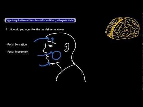 Organizing the Neuro Exam: Mental Status and Cranial Nerves [UndergroundMed]