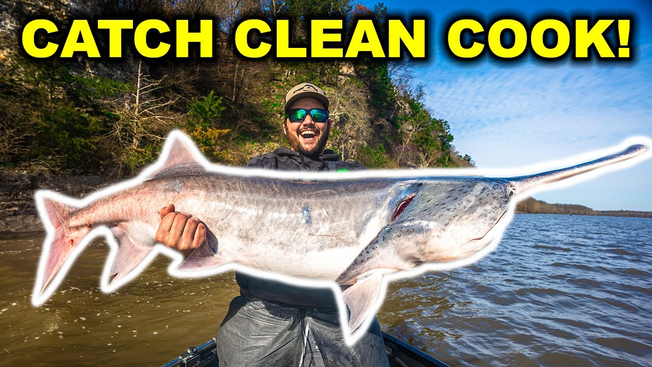 Epic CATCH CLEAN COOK Snagging HUGE SPOONBILL in the RIVER!!!