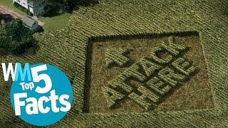 Top 5 Weirdest Crop Circle Facts