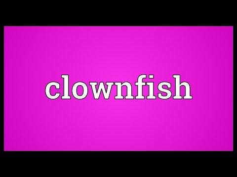 Clownfish Meaning