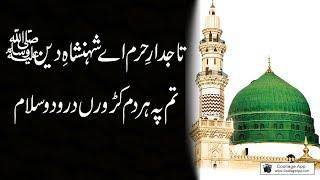 Tajdar-e-Haram Ae Shahenshah-e-Deen | SALAM | Best New Naats 2020 |LYRICS| Ramzan Shareef 2018