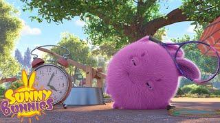 SUNNY BUNNIES - Sleepy Big Boo   Season 3   Cartoons for Children