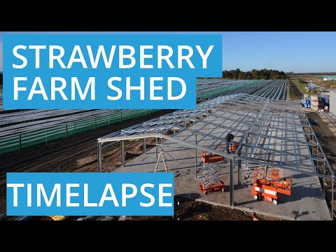Commercial Shed for Strawberry Farm in Bullsbrook WA 6084