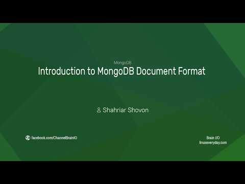 Introduction to MongoDB Document Format