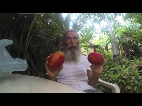 Cheap, Abundant Fruit in San Jose, Costa Rica