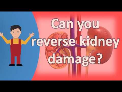 Can you reverse kidney damage ?