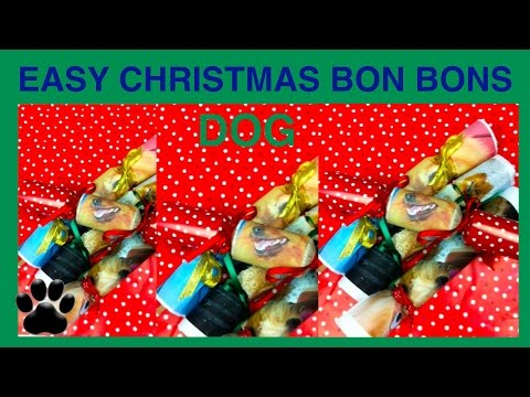 How to make EASY CHRISTMAS CRACKERS - DOG XMAS FESTIVE BON BONS - DIY Dog Food by Cooking For Dogs