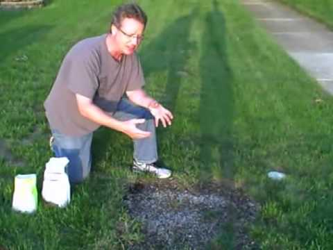 How to Grow Grass From Seed - How to Plant Grass From Seed