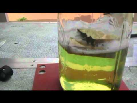 How to create a Vacuum Infusion Chamber to...