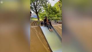 French bulldog shows kids at park how to go down the slide