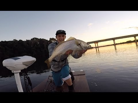 We Did It! (Chasing Jewfish Part 2)