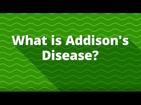 What is Addison's Disease? (Adrenal Hormone Insufficiency)