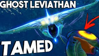 killing a ghost leviathan Videos - 9tube tv