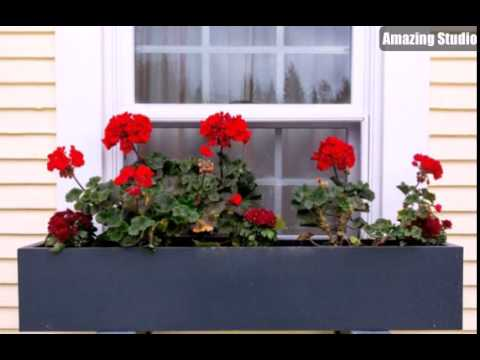 Cute DIY Window Box Planters