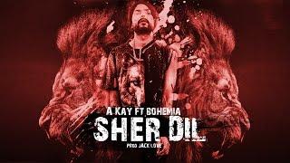 Sher Dil - Akay ft. Bohemia | New 2017 rap/song beat | akay ft. bohemia Type beat| Instrumental