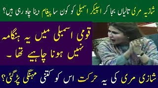 Shazia Mari Strange Attitude in National Assembly | Neo News