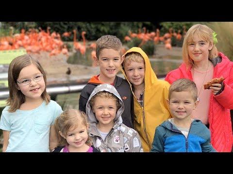 San Diego Zoo ~ Homeschool Kids Socialize w/ J House Vlogs