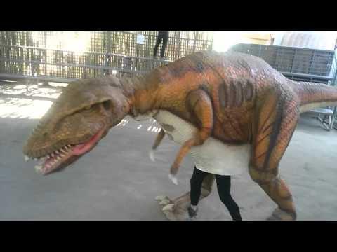 Dinosaur Island Mascot Dance