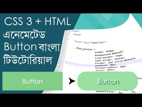 CSS Animated Button Bangla Tutorial - (CSS and HTML)